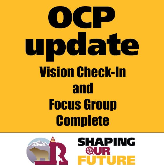 July_Vision Check In and Focus Group complete