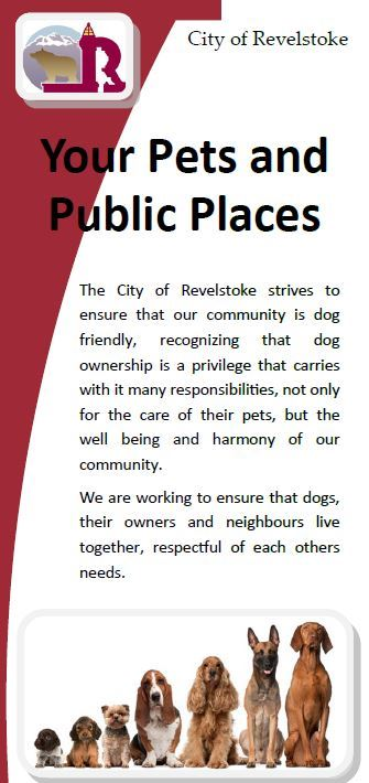Pets and Public Spaces