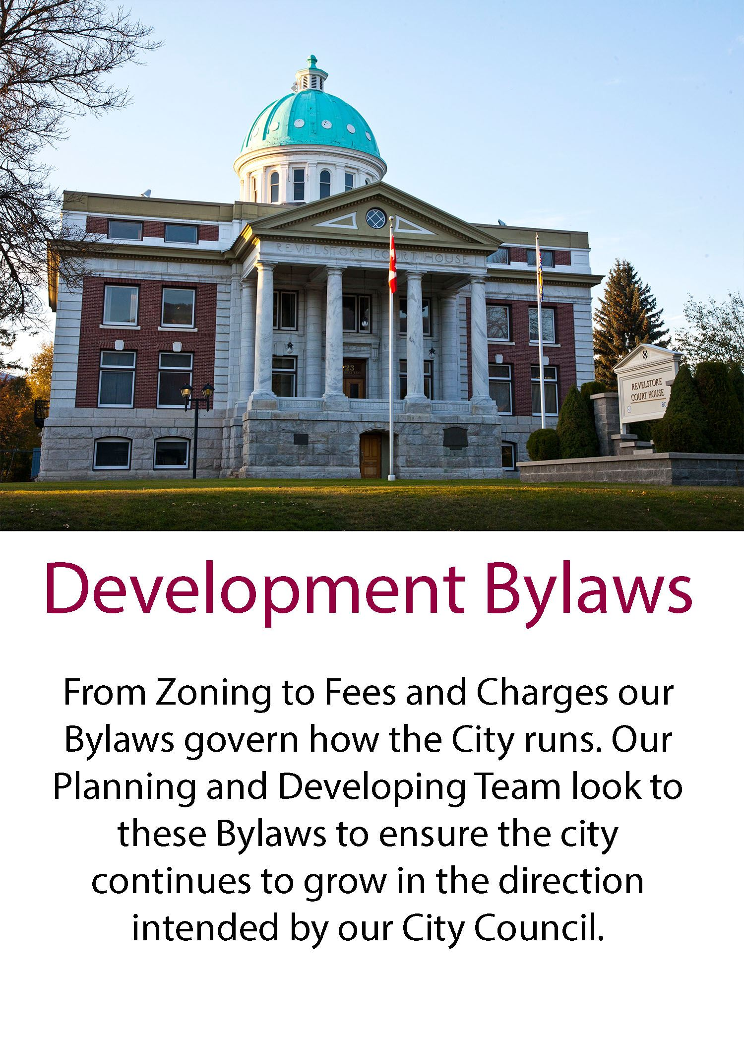 Development Bylaws button